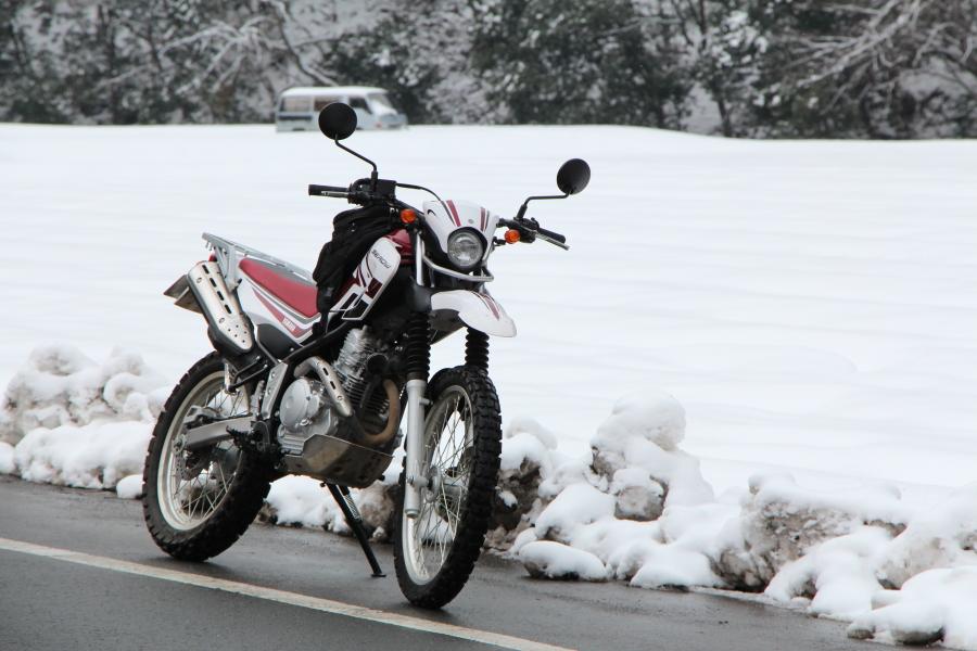 雪とセロー250