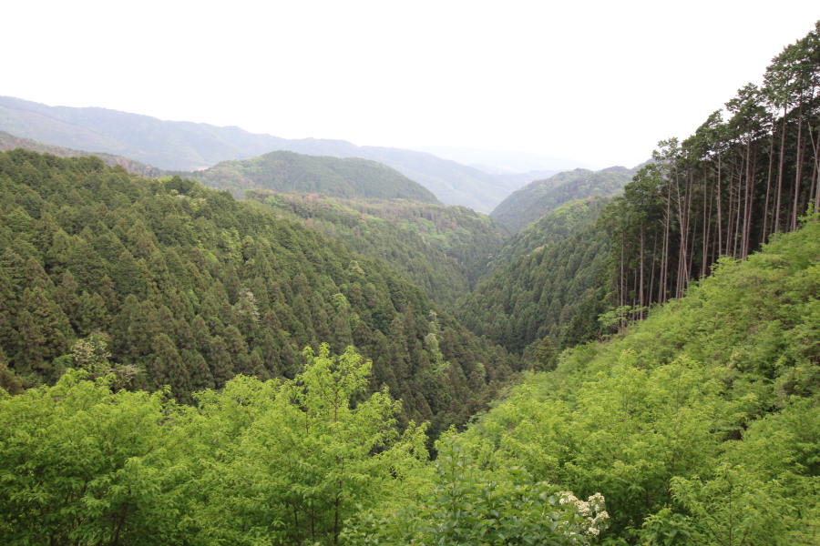 地獄谷峠の眺望