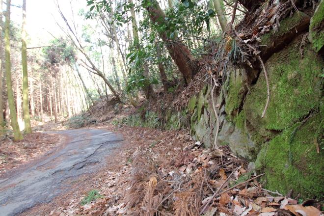狩待峠は、苔生す深淵の道