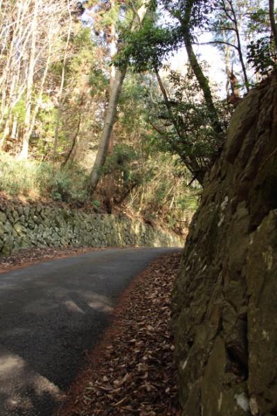 狩待峠の路面