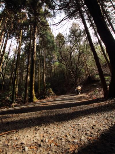狩待峠とCB1300SB