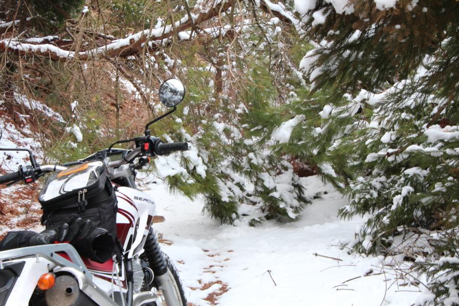 雪景色のダルマ峠