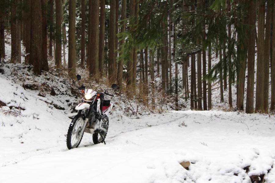 雪のウジウジ峠
