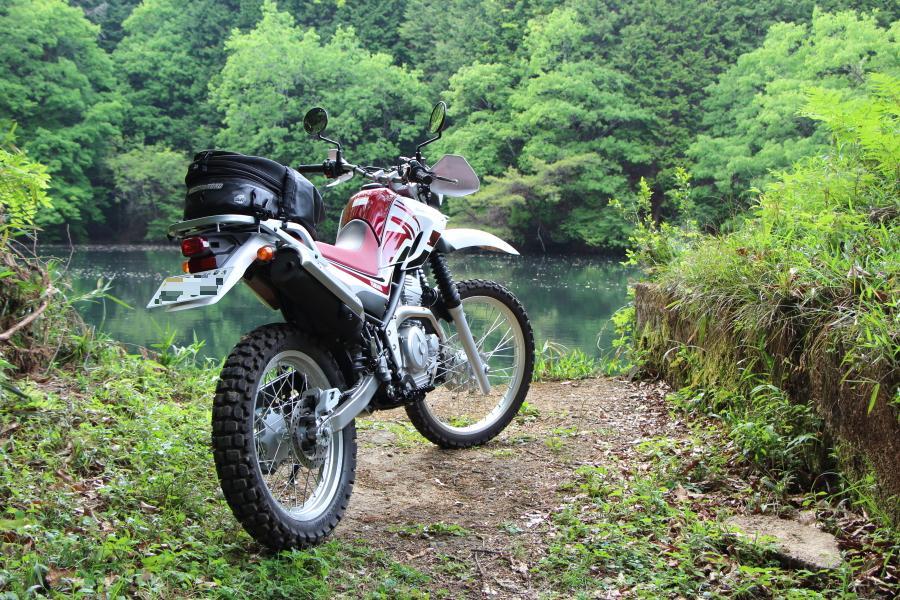 万寿峠近くの野池