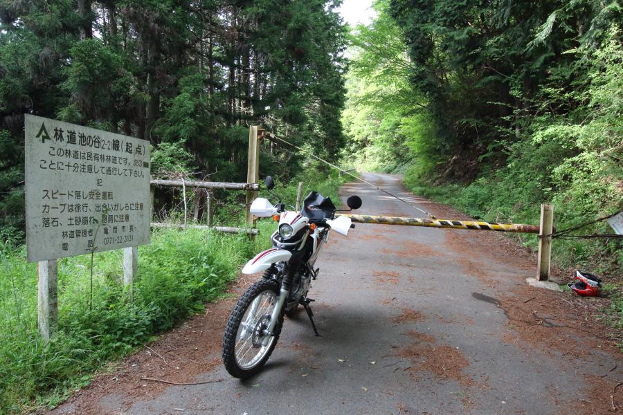 林道池の谷線