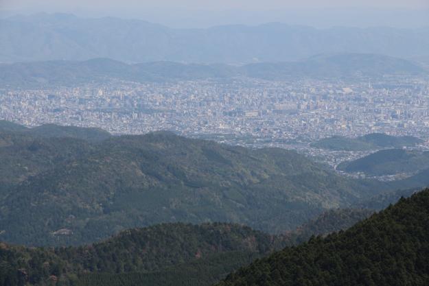 ダルマ峠から見える街並み