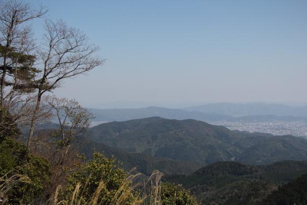 ダルマ峠と風景