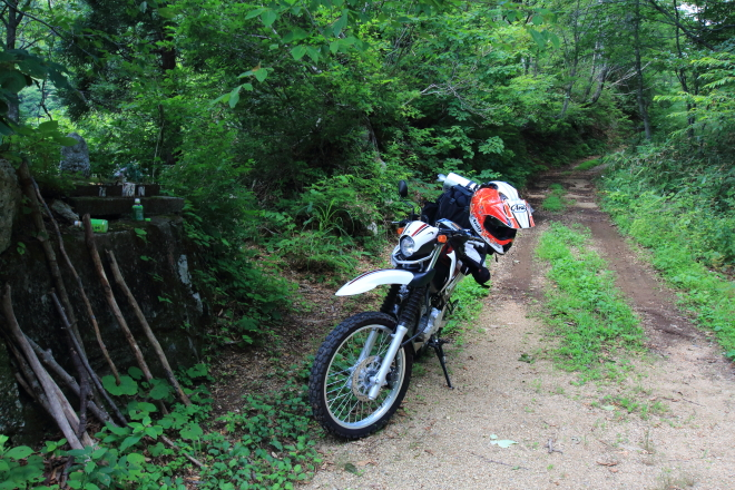 旧ホハレ峠の林道と登山道の接点