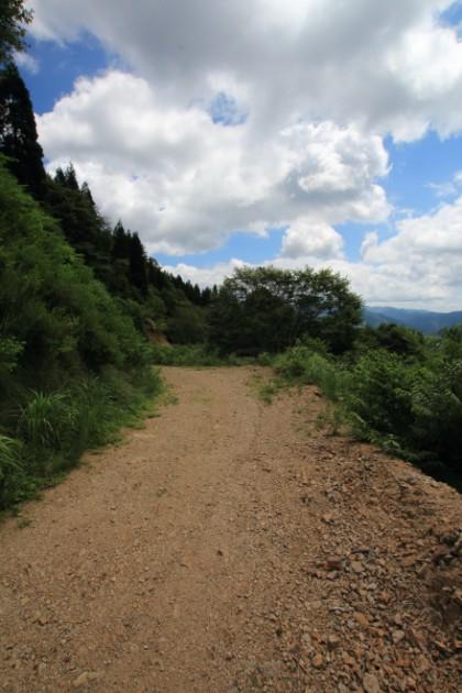 林道ホハレ線の路面