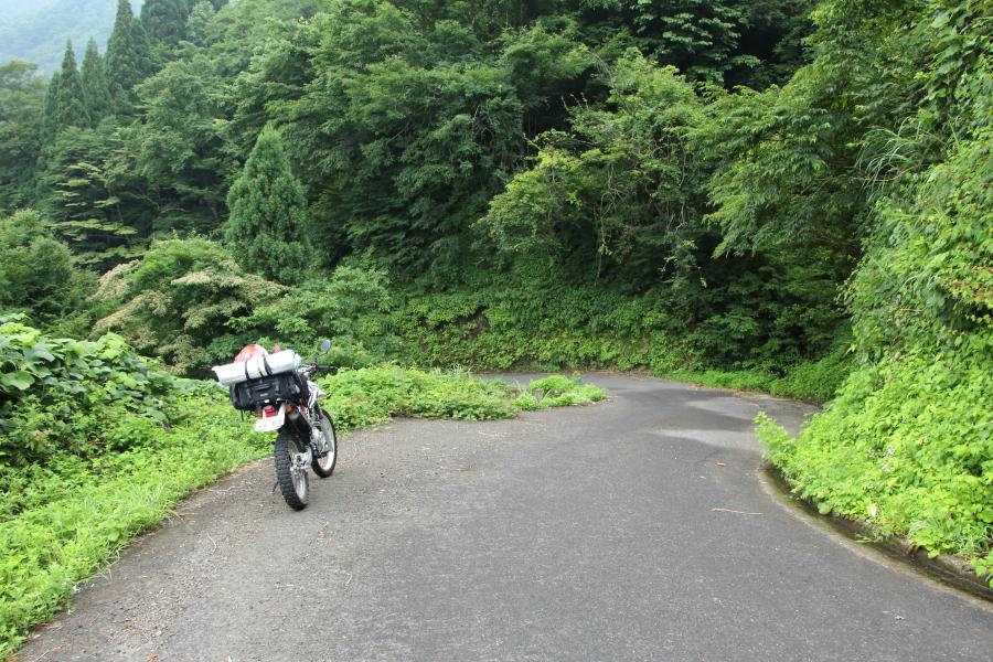 林道冠山線の路面
