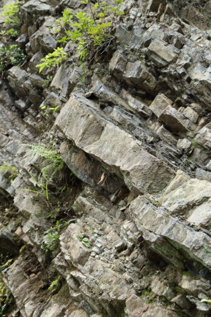 冠山の地層