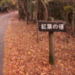 小野峠:滋賀県