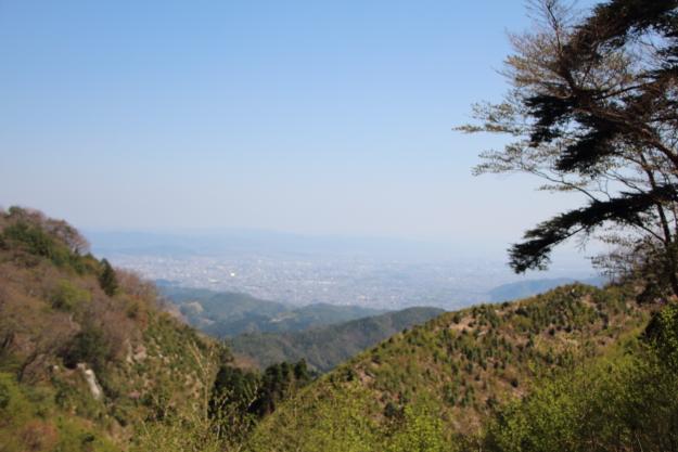 サカサマ峠の眺望
