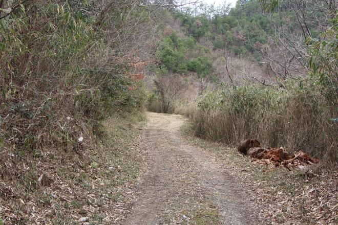 峠まで歩いて行く