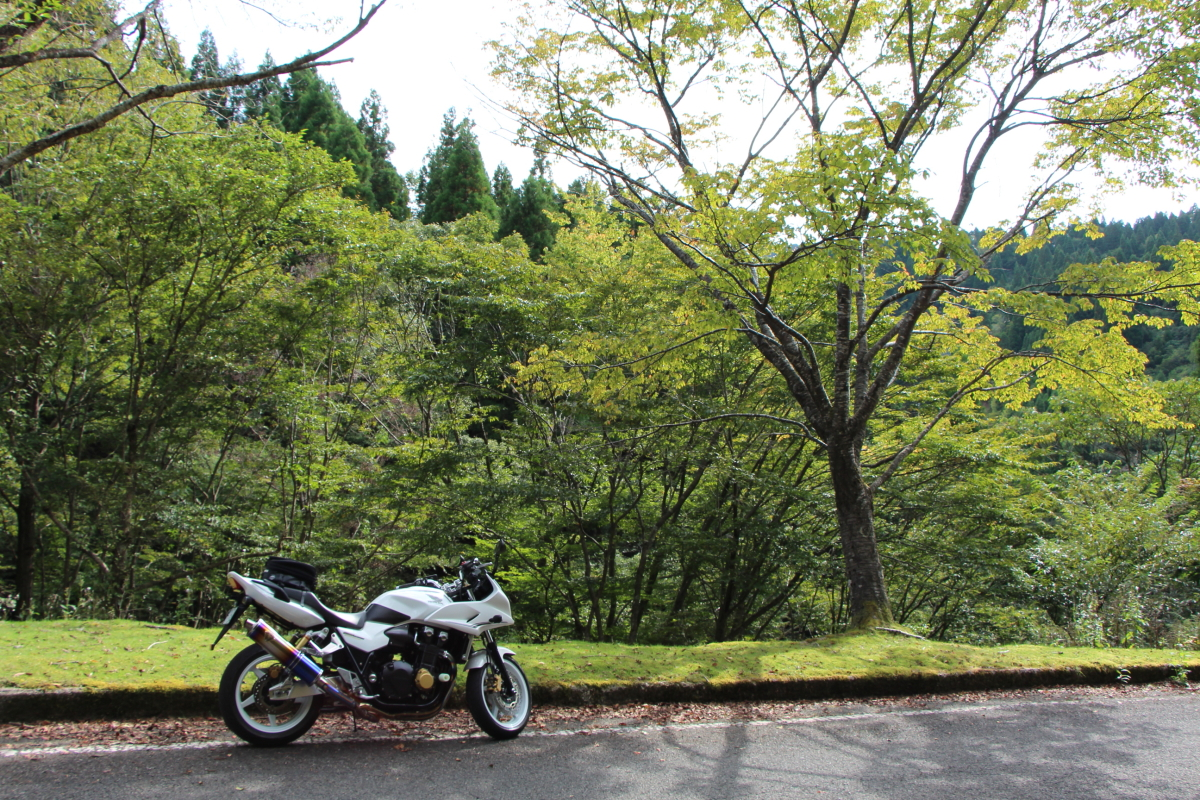 佐々里峠とバイク