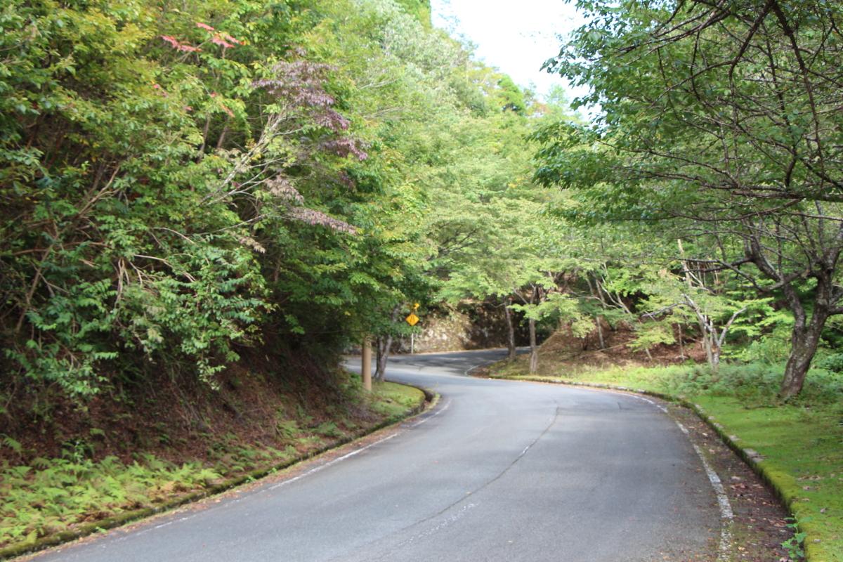 佐々里峠の路面