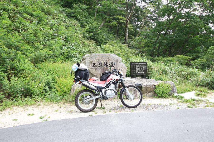 鳥越峠の全景