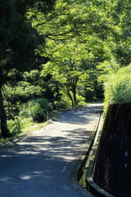 岐阜県側の広域基幹林道鳥越線の起点部