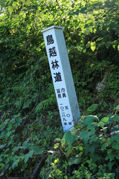 広域基幹林道鳥越線