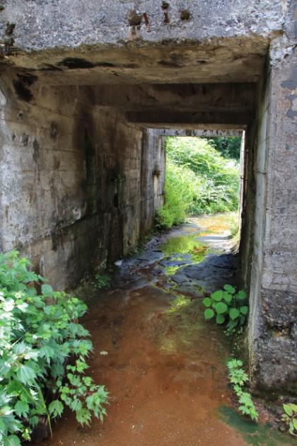 土倉鉱山跡の写真3