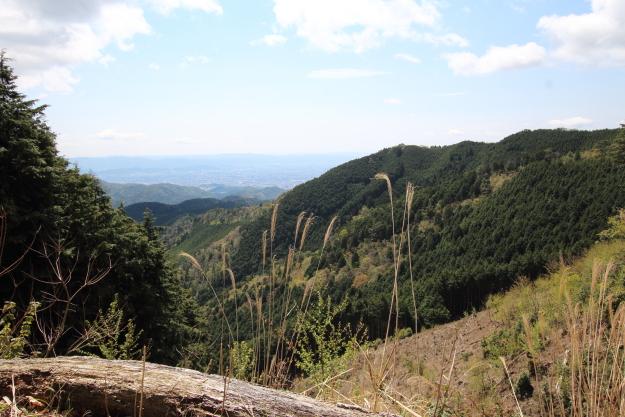 ウジウジ峠から見た風景