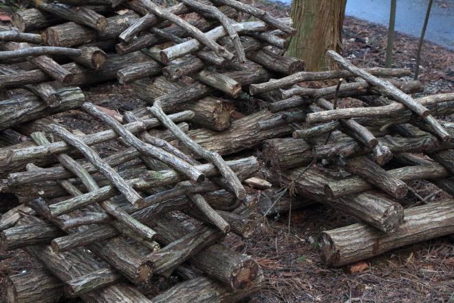 シイタケ栽培の原木