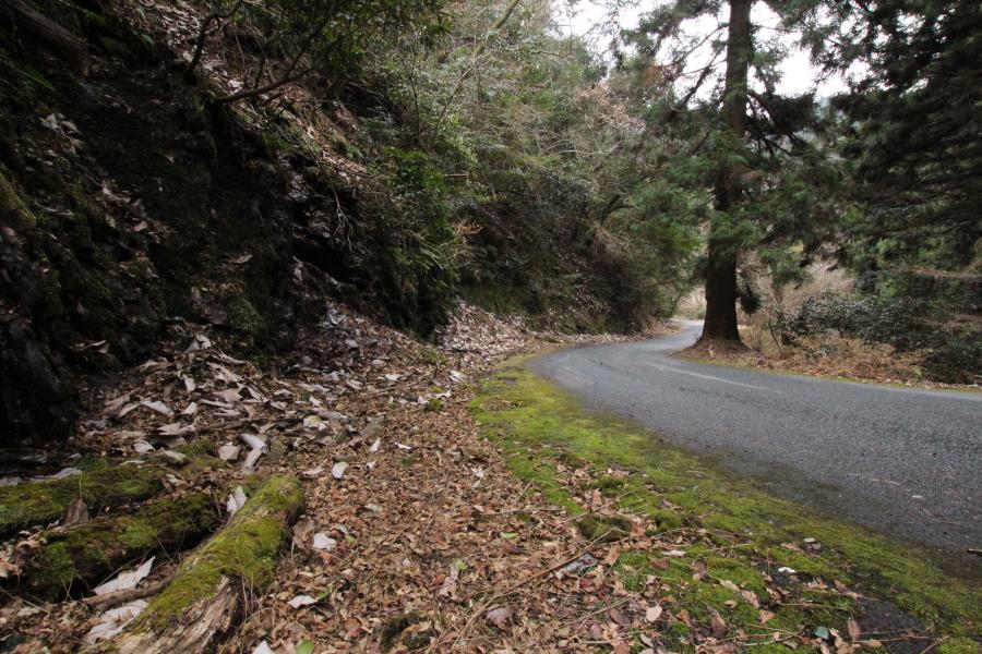 横嶺峠の路面状況
