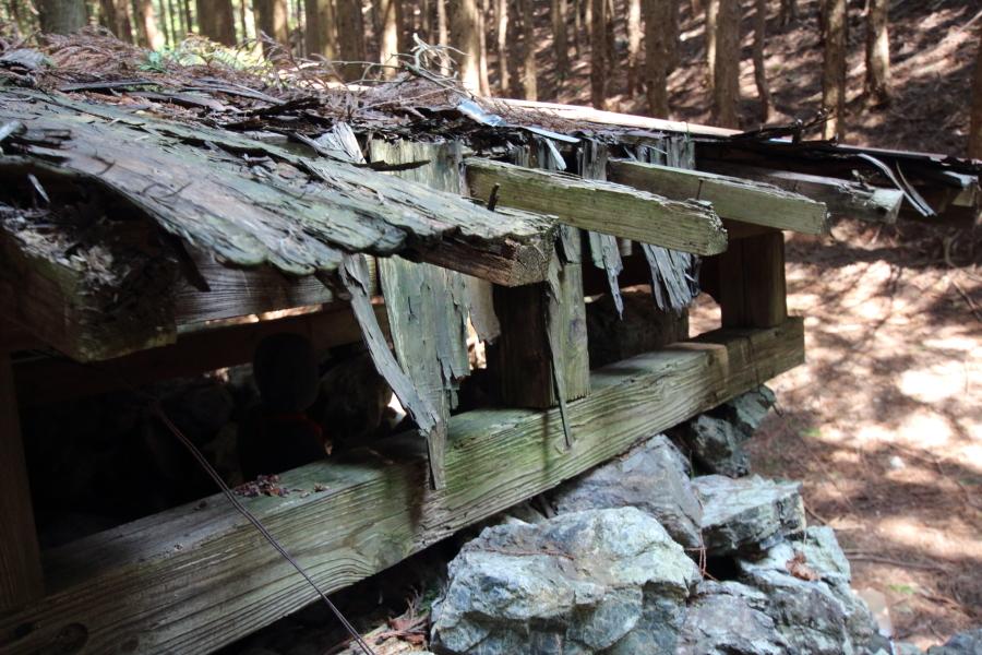 朽ちる屋根