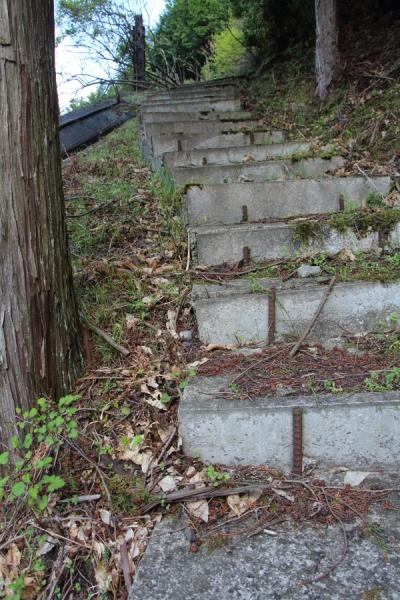 階段を発見