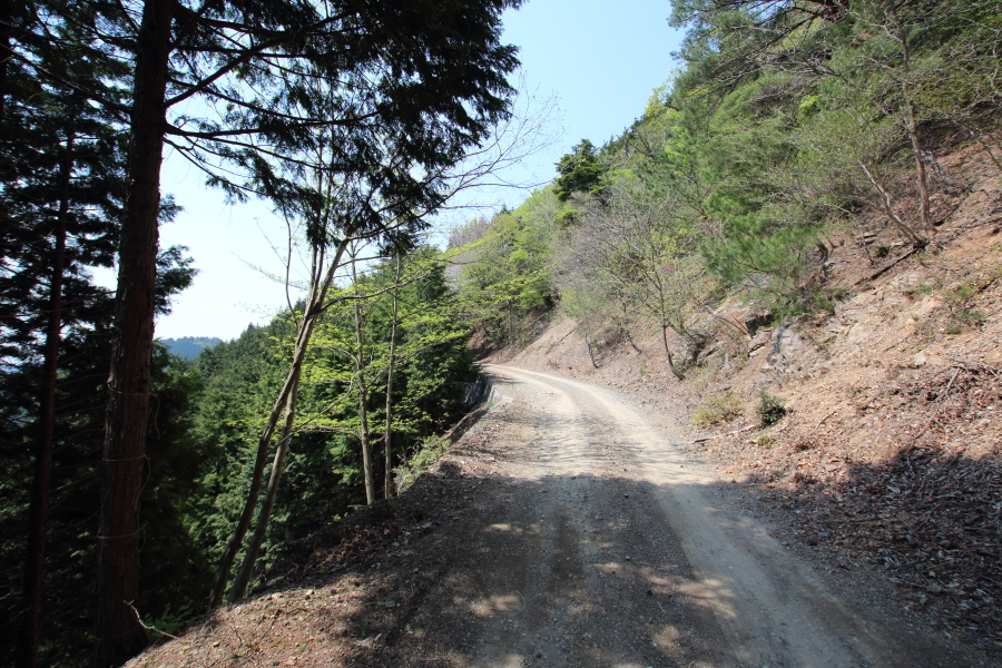 八丁峠(林道峠)の路面