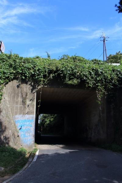 大阪側から見たトンネル