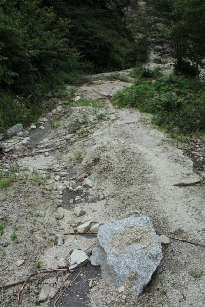 林道国見線の路面