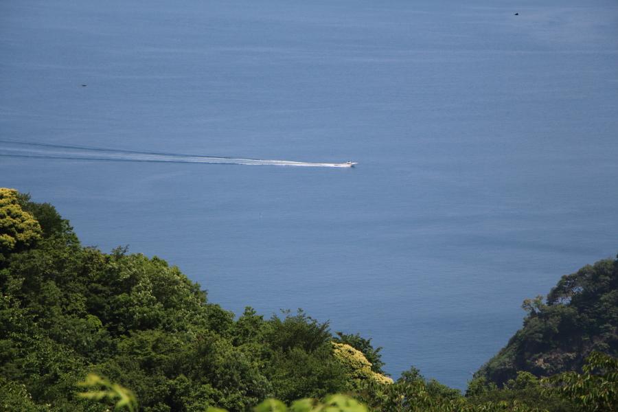 三方五湖レインボーラインのボートの航跡
