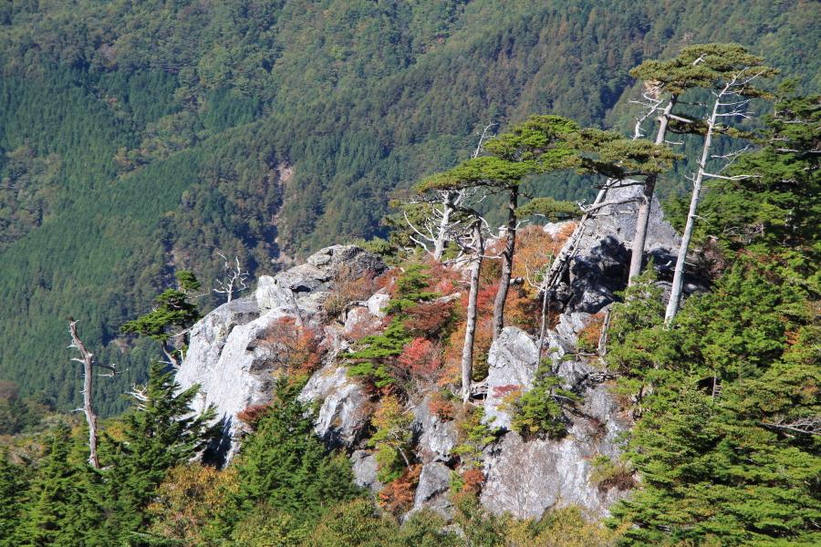 剣山からの眺望