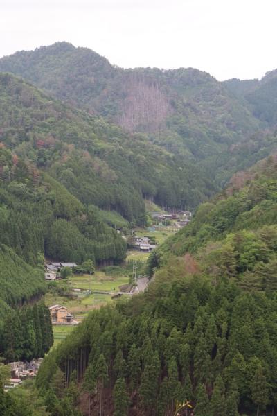 谷間の風景
