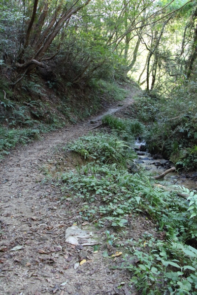 鳴川峠への道
