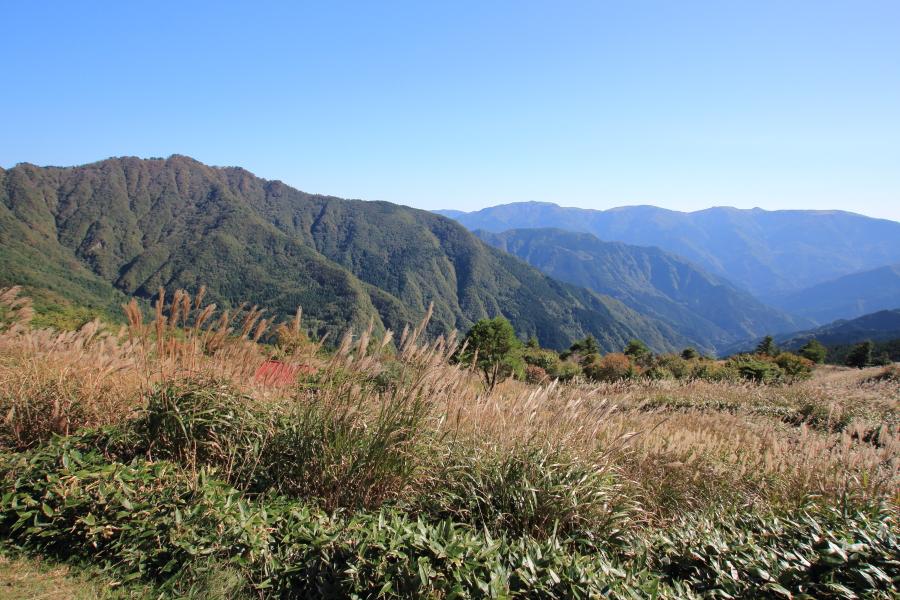 落合峠の眺望