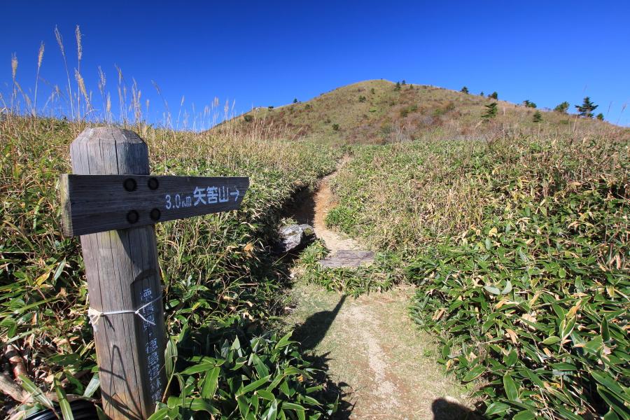 矢筈山(やはずやま)の山頂に向かう尾根筋を縦走するルート