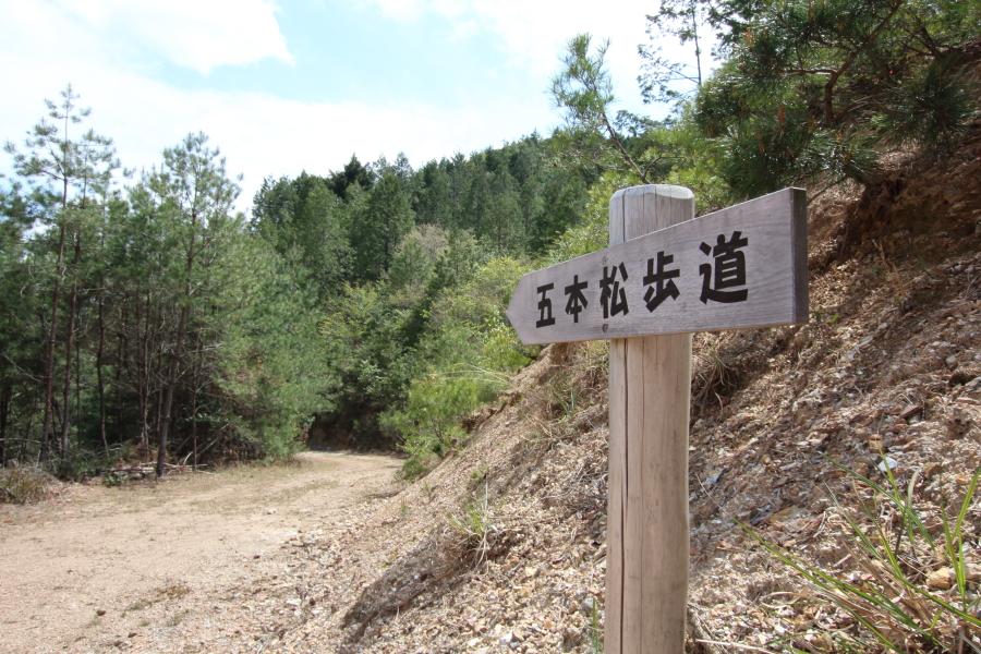 五本松歩道