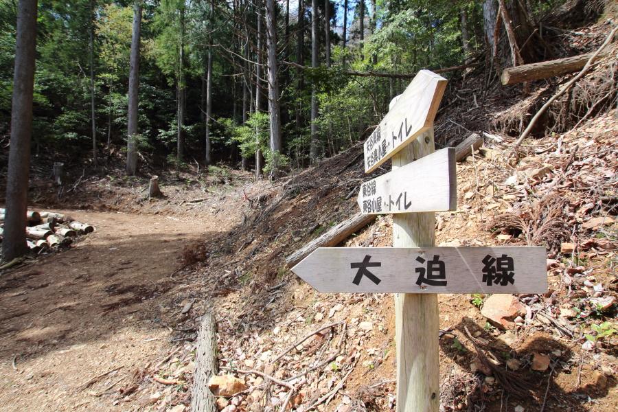 京都の林道