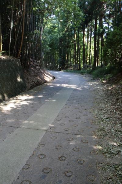立石越の路面