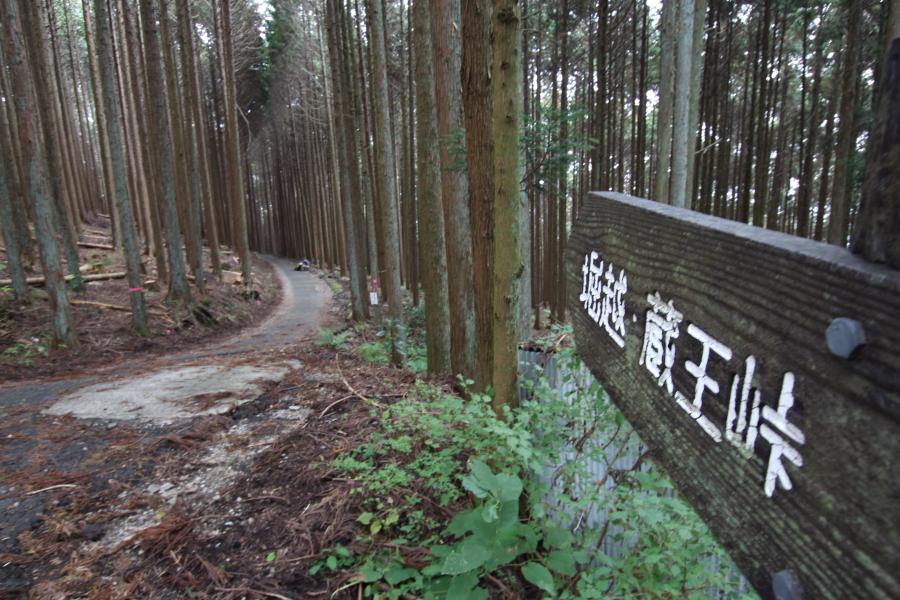 堀越・蔵王峠への道標