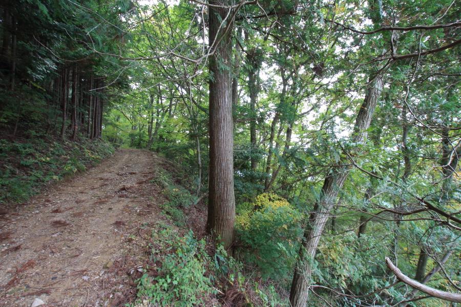 七越峠から蔵王峠への道