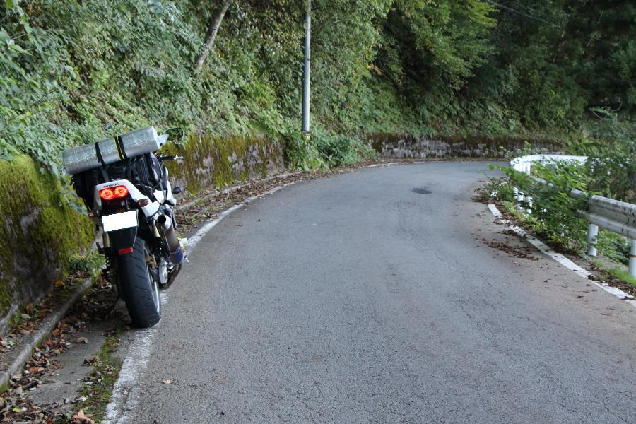 みよし町加茂へ至る路面