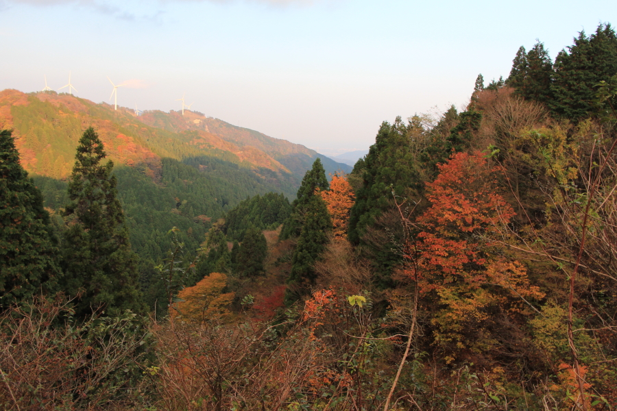 青山高原の風景