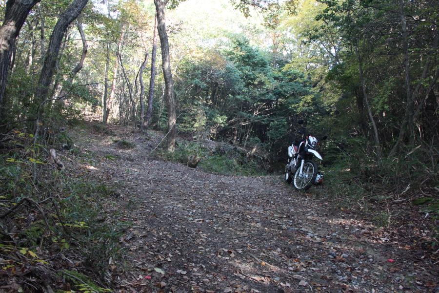 観音寺峠の全景