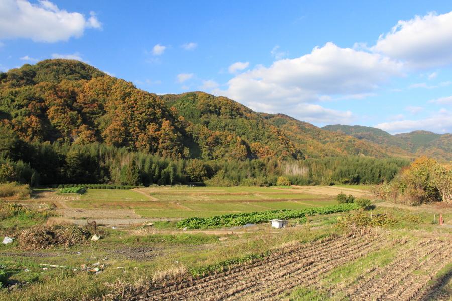 桜峠方向の山並み