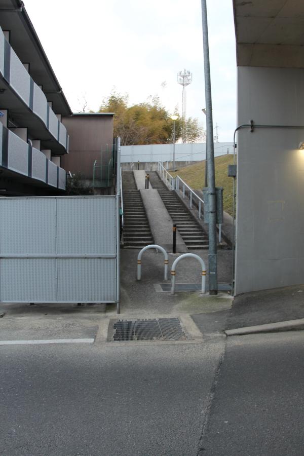 拡幅道への階段
