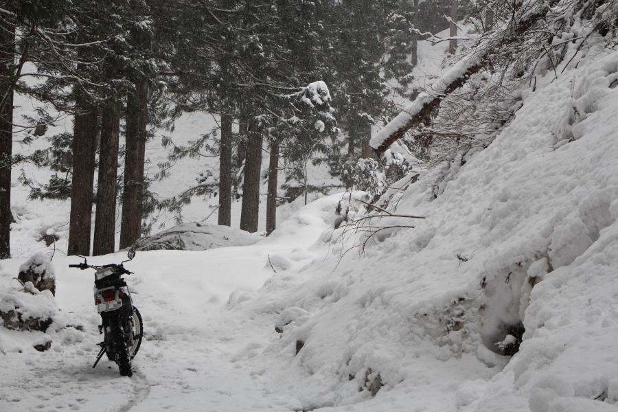 雪のビレッジラインとセロー250