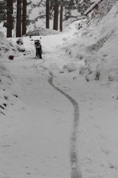 雪道に付くセロー250の軌跡
